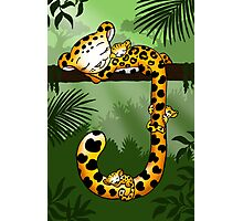 Jaguar in the Jungle Photographic Print