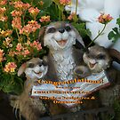 Banner Challenge; Garden Sculptures & Ornaments; Lei Hedger Photography by leih2008