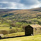 Swaledale by Stephen Knowles