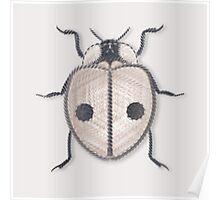 LadyBug - White Poster