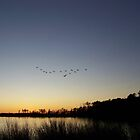 Sunset and Flying V formation by icesrun