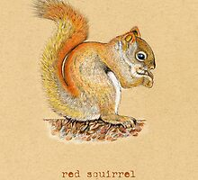 Red Squirrel by Revelle Taillon