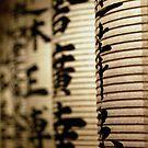 Lanterns in Kyoto by yiska