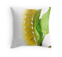 Fuzzy Wuzzy Throw Pillow