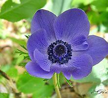 """""""Feelin' Blue"""" by Gail Jones"""