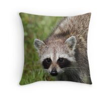 Stare Contest Throw Pillow