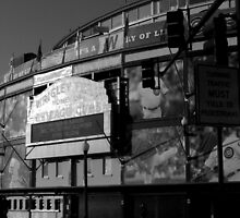 Wrigley field..home of the cubbies by jammingene