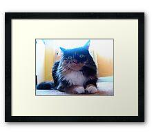 My Best (furry feline) Girl Framed Print