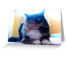 My Best (furry feline) Girl Greeting Card
