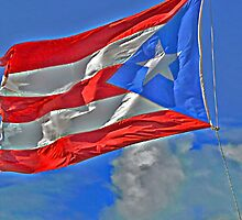 The Flag of Puerto Rico by Turtle6