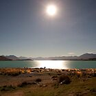 Lake Tekapo By Moonlight by Centralian Images