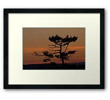 Silhouettes At Dusk Framed Print