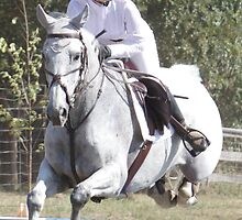 Berrima Horse Trials # 336_01 by Samantha Bailey