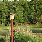 Birdhouse On The Lane by Littlehalfwings