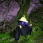 Resting Wanderer by Fernando Rosenberg