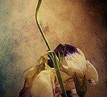 Do Not Forsake Me.... by Sharon House