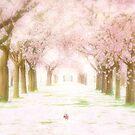 Forever Spring by Graeme Hindmarsh