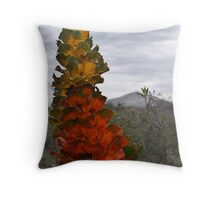 royal hakea - fitzgerald river np, western australia Throw Pillow