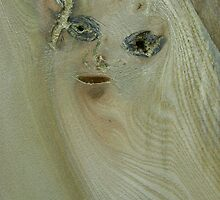 the girl in the wood (resemblance) by armadillozenith