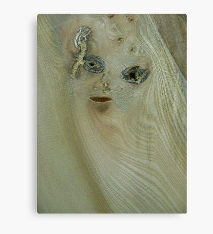 the girl in the wood (resemblance) Canvas Print