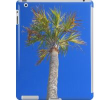 Icons of the Beach iPad Case/Skin