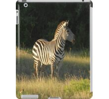Grasslands Zebra iPad Case/Skin