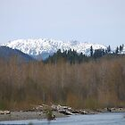 Skokomish River and Olympic Mountains by Jonice