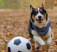 Four-legged Soccer Player by William C. Gladish