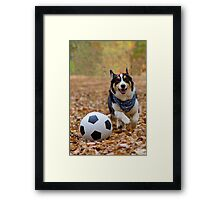 Four-legged Soccer Player Framed Print