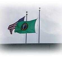 USA And Washington Flags by Jonice