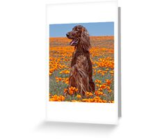 Phantom in the Poppies Greeting Card