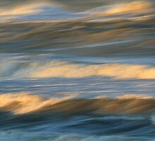 Waves in Motion by William C. Gladish, World Design