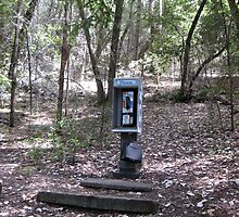 Phone Booth in the Woods by Christopher Marcoux