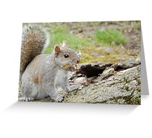 What Snickers? Greeting Card