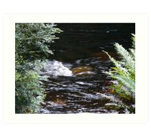 Franklin River, Wild Rivers UNESCO World Heritage Site Tasmania Art Print