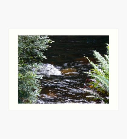 Franklin River, Wild Rivers UNESCO World Heritage Site Tasmania Art Print