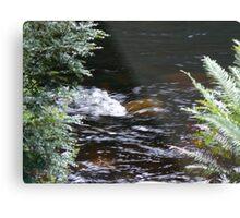 Franklin River, Wild Rivers UNESCO World Heritage Site Tasmania Metal Print