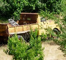 Truck rusting in the woods by Christopher Marcoux
