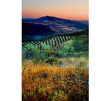 Sunset over an Andalucian Landscape, Spain. Photographic Print