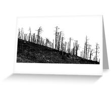 burnt trees on hill Greeting Card