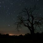 Star Trails by Arthur Koole