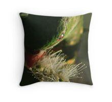 Green Parrot Head - Buderim Pond - Qld Throw Pillow
