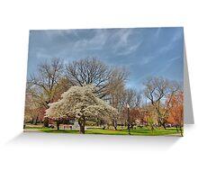 Commomwealth - Boston Greeting Card