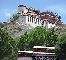 'lama nation' - The Potala Palace in Lhasa by Adam Switzer