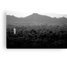 lonely buddha Canvas Print