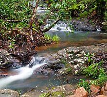 Tully Gorge - Far North Queensland by Paul Davis