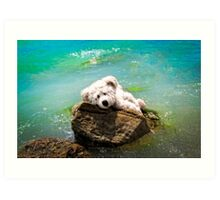 On The Rocks - Teddy Bear Art By William Patrick And Sharon Cummings Art Print