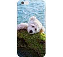 Just Hang On - Teddy Bear Art By William Patrick And Sharon Cummings iPhone Case/Skin