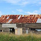 Old Barn by Jenelle  Irvine