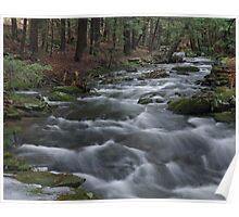 Meandering Stream Poster